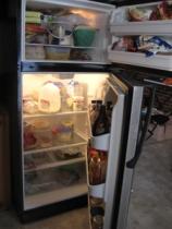 sparse fridge